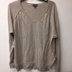 Express Mens sweater-V neck